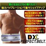 Dxperfetbelt_2